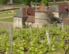 L'œnologie version balade au Château de Valmer